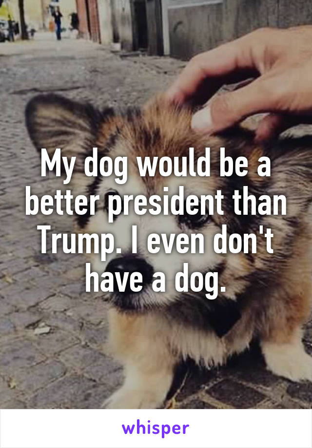 My dog would be a better president than Trump. I even don't have a dog.