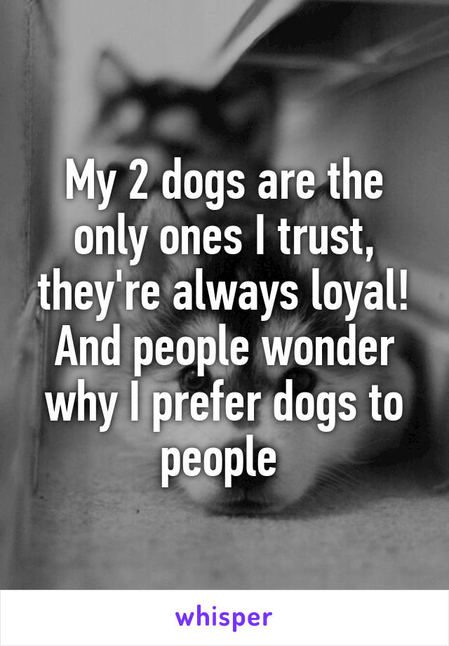 My 2 dogs are the only ones I trust, they're always loyal! And people wonder why I prefer dogs to people