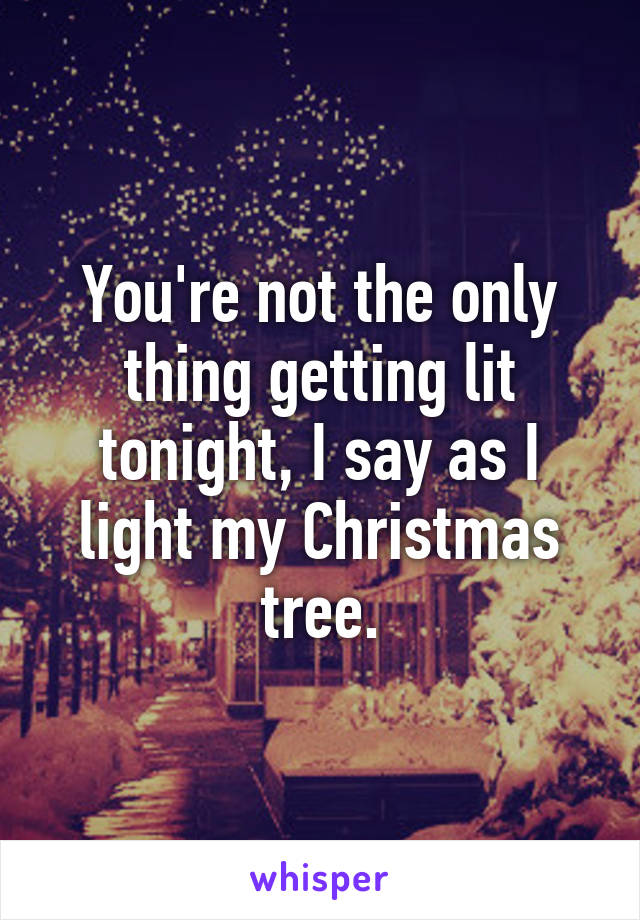 You're not the only thing getting lit tonight, I say as I light my Christmas tree.