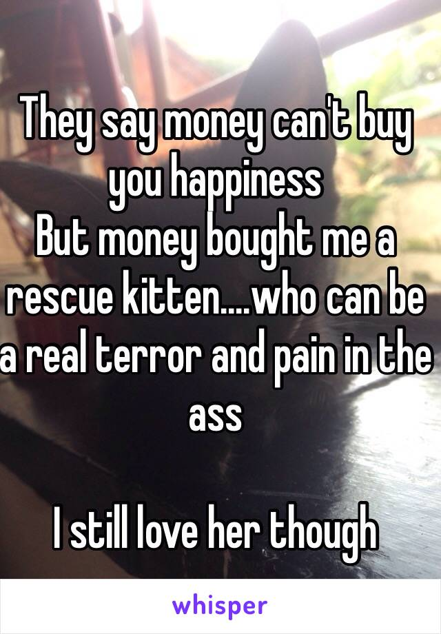 They say money can't buy you happiness  But money bought me a rescue kitten....who can be a real terror and pain in the ass  I still love her though