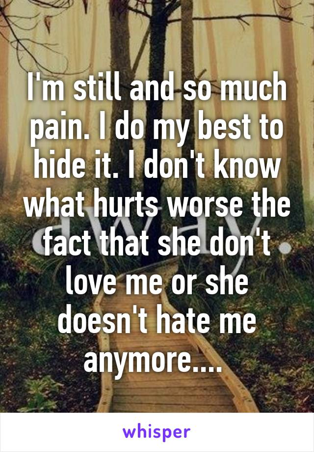 I'm still and so much pain. I do my best to hide it. I don't know what hurts worse the fact that she don't love me or she doesn't hate me anymore....