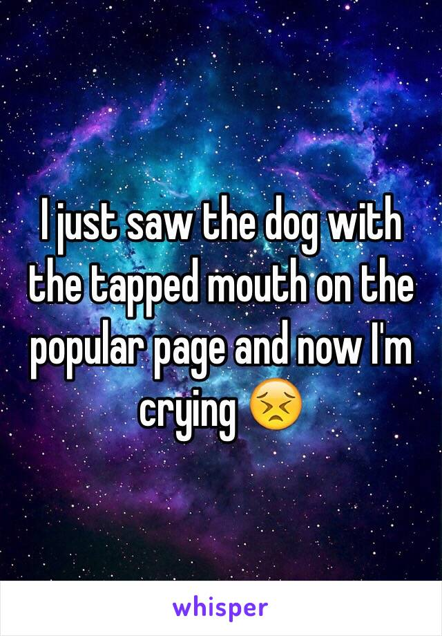 I just saw the dog with the tapped mouth on the popular page and now I'm crying 😣