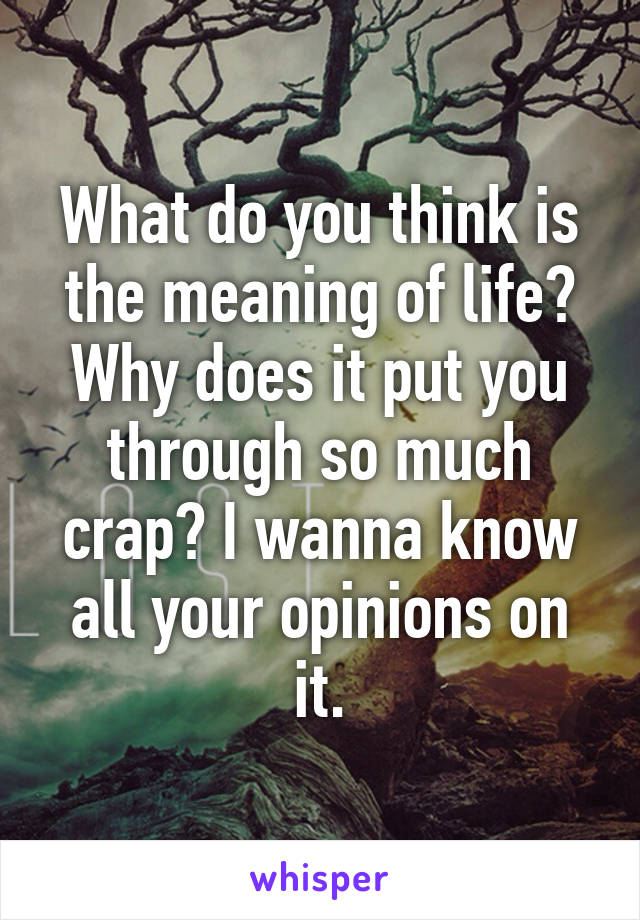 What do you think is the meaning of life? Why does it put you through so much crap? I wanna know all your opinions on it.