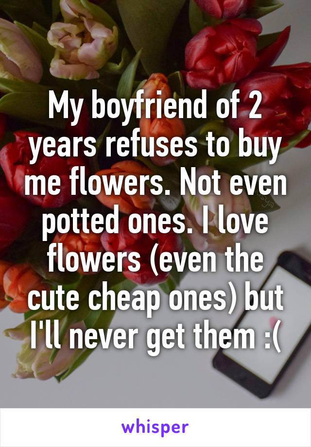 My boyfriend of 2 years refuses to buy me flowers. Not even potted ones. I love flowers (even the cute cheap ones) but I'll never get them :(