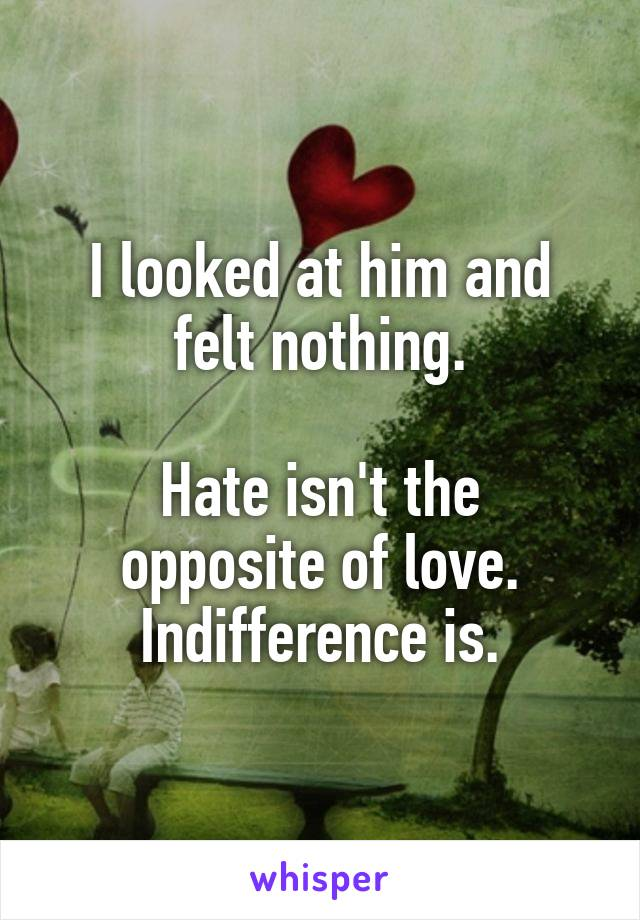 I looked at him and felt nothing.  Hate isn't the opposite of love. Indifference is.