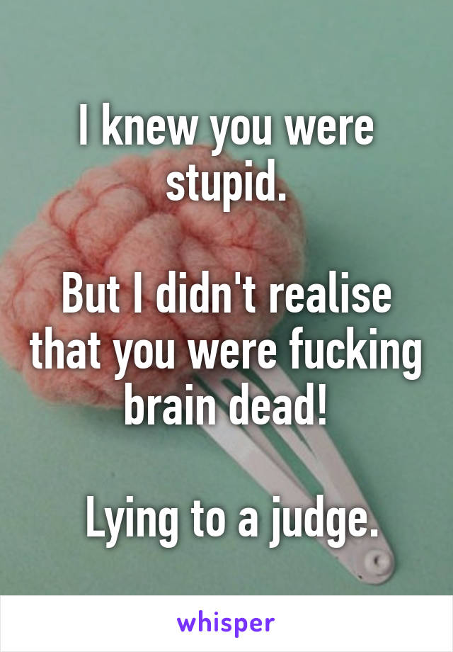 I knew you were stupid.  But I didn't realise that you were fucking brain dead!   Lying to a judge.