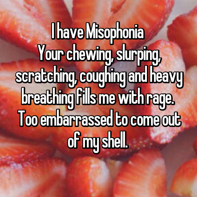 I have Misophonia  Your chewing, slurping, scratching, coughing and heavy breathing fills me with rage.  Too embarrassed to come out of my shell.