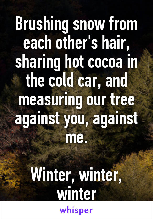 Brushing snow from each other's hair, sharing hot cocoa in the cold car, and measuring our tree against you, against me.  Winter, winter, winter