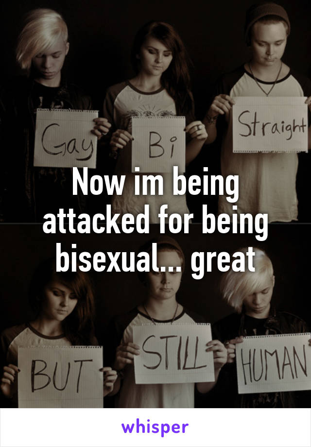 Now im being attacked for being bisexual... great