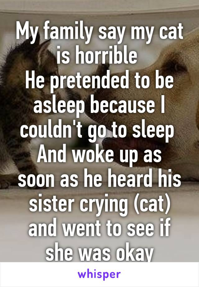 My family say my cat is horrible  He pretended to be asleep because I couldn't go to sleep  And woke up as soon as he heard his sister crying (cat) and went to see if she was okay