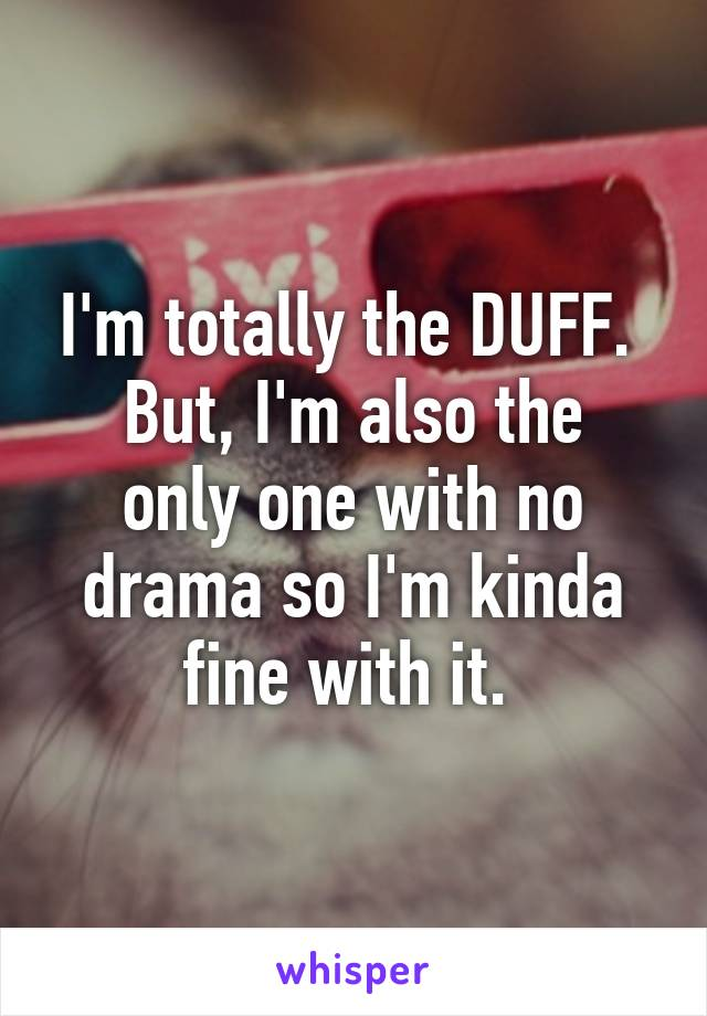 I'm totally the DUFF.  But, I'm also the only one with no drama so I'm kinda fine with it.