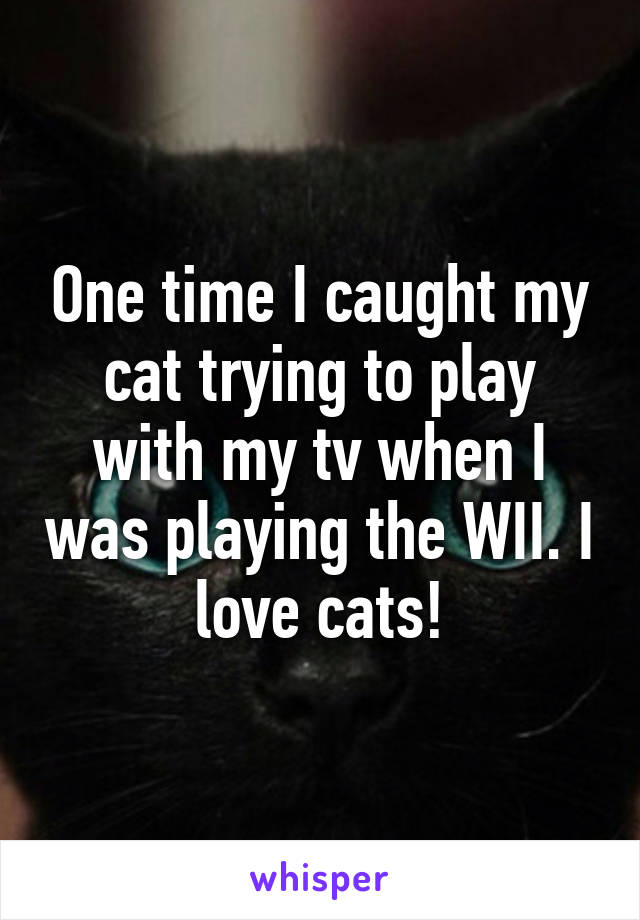 One time I caught my cat trying to play with my tv when I was playing the WII. I love cats!
