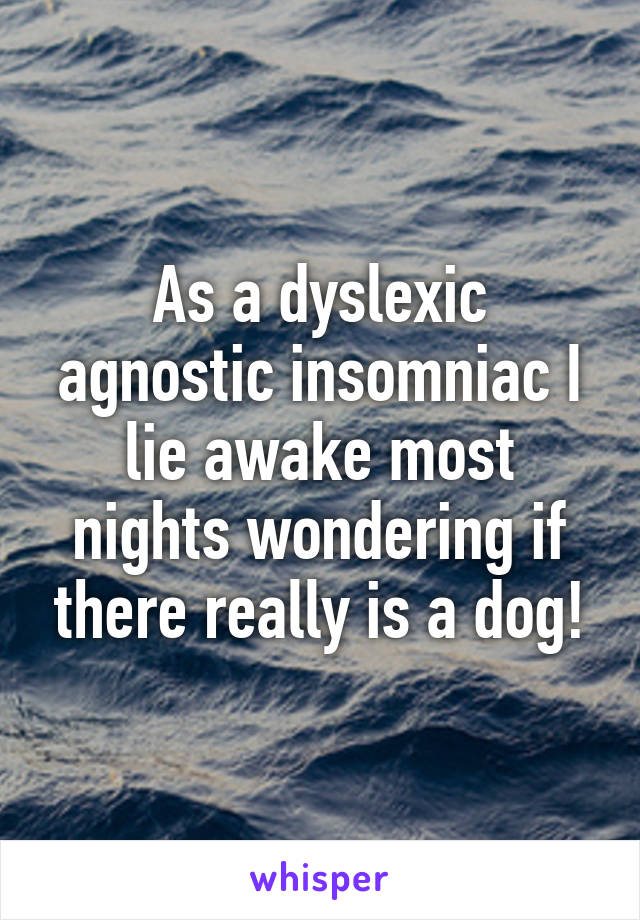 As a dyslexic agnostic insomniac I lie awake most nights wondering if there really is a dog!