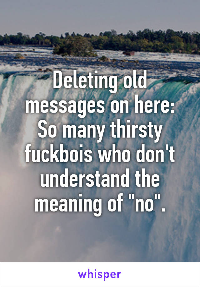 """Deleting old messages on here: So many thirsty fuckbois who don't understand the meaning of """"no""""."""