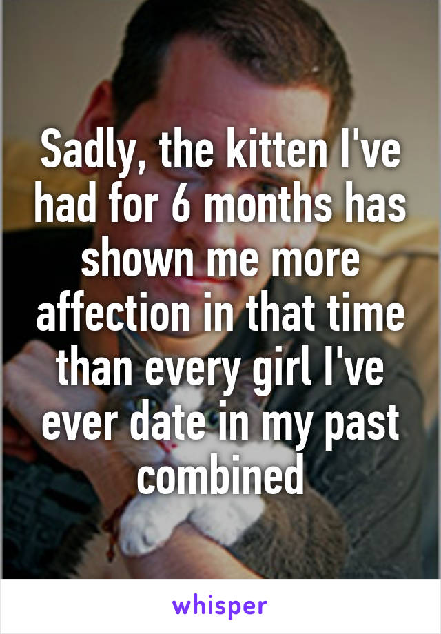 Sadly, the kitten I've had for 6 months has shown me more affection in that time than every girl I've ever date in my past combined