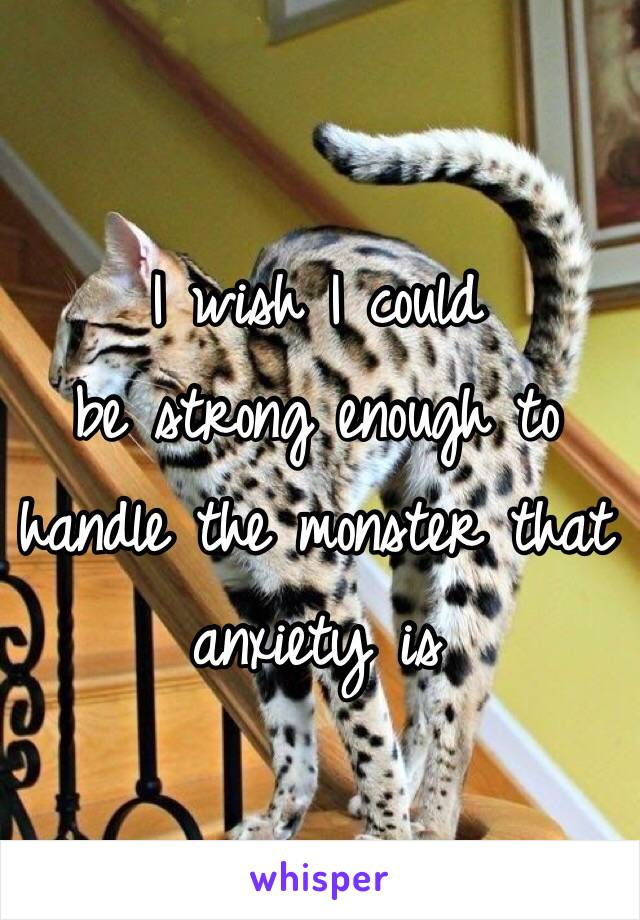 I wish I could  be strong enough to handle the monster that anxiety is