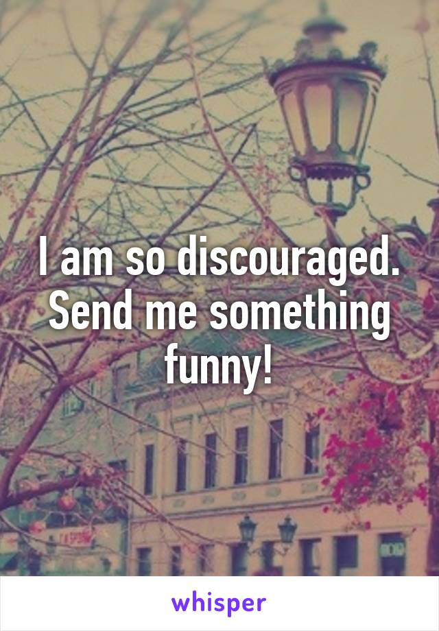 I am so discouraged. Send me something funny!