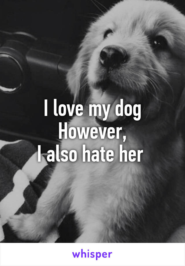I love my dog However, I also hate her