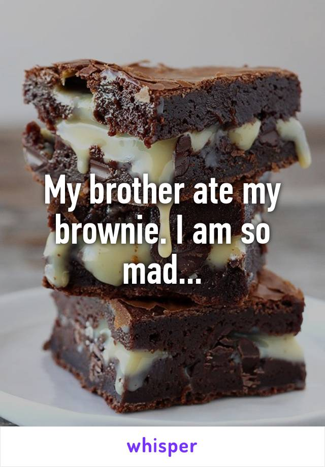 My brother ate my brownie. I am so mad...
