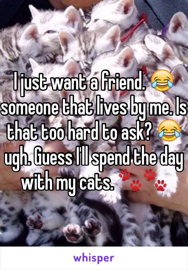 I just want a friend. 😂 someone that lives by me. Is that too hard to ask? 😂 ugh. Guess I'll spend the day with my cats. 🐾🐾