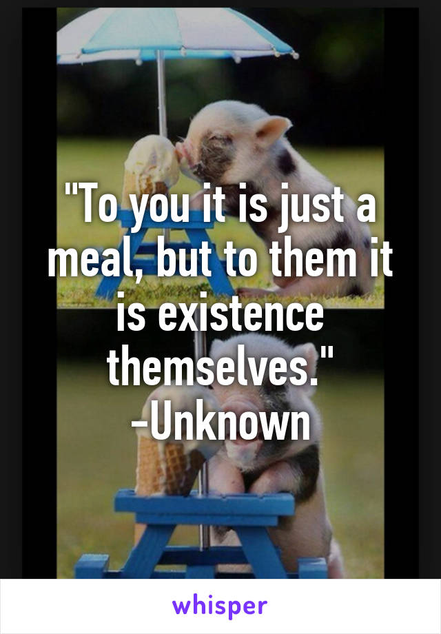 """""""To you it is just a meal, but to them it is existence themselves."""" -Unknown"""