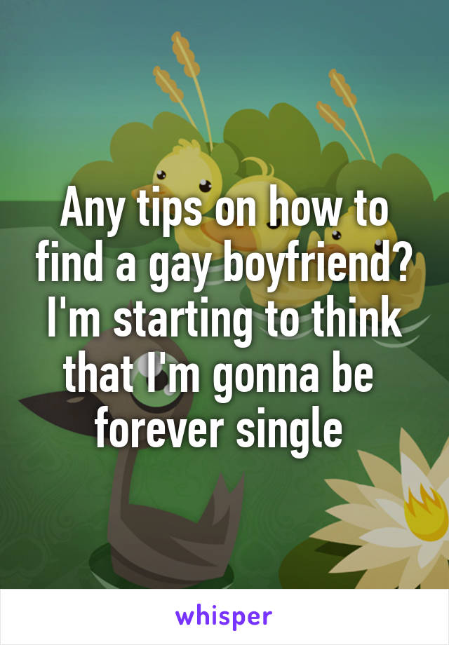 Any tips on how to find a gay boyfriend? I'm starting to think that I'm gonna be  forever single