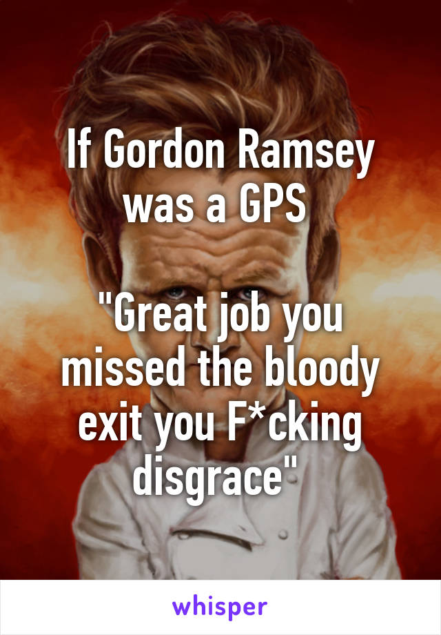 """If Gordon Ramsey was a GPS   """"Great job you missed the bloody exit you F*cking disgrace"""""""