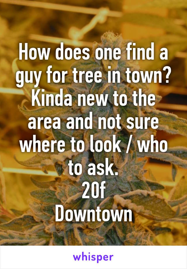 How does one find a guy for tree in town? Kinda new to the area and not sure where to look / who to ask. 20f Downtown