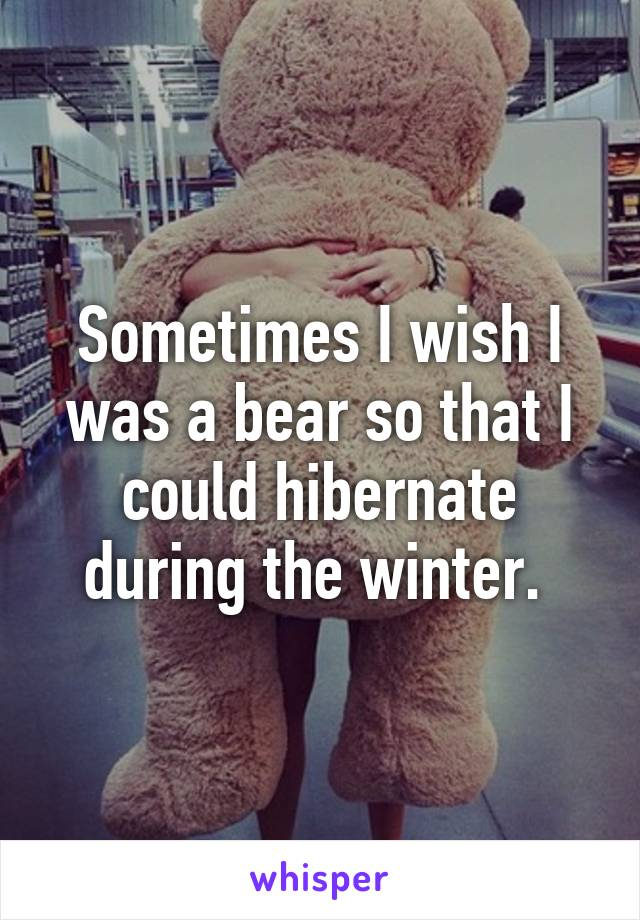 Sometimes I wish I was a bear so that I could hibernate during the winter.