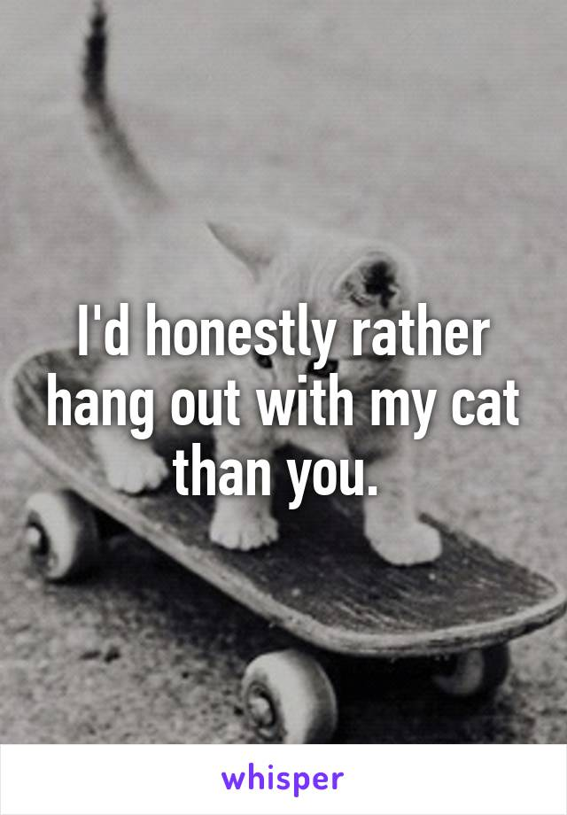 I'd honestly rather hang out with my cat than you.