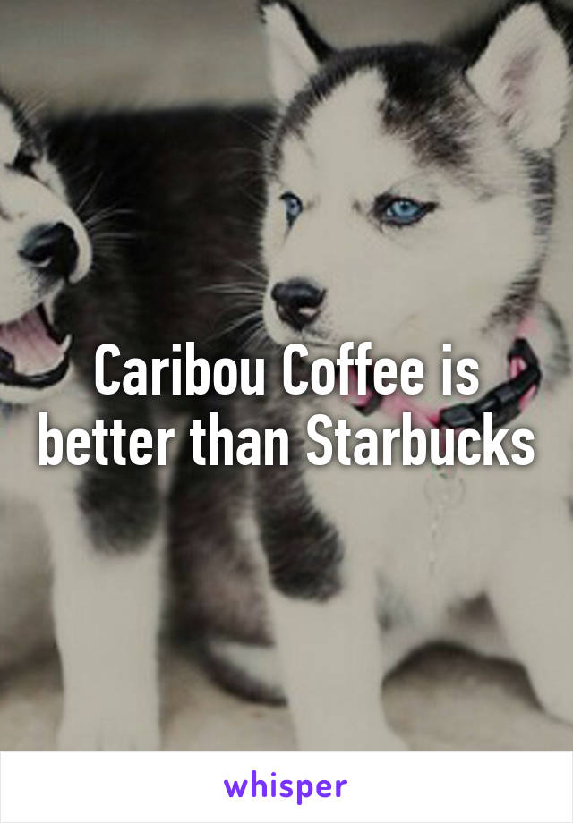 Caribou Coffee is better than Starbucks