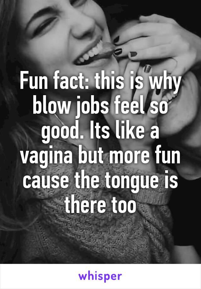 Why do blowjobs feel so good
