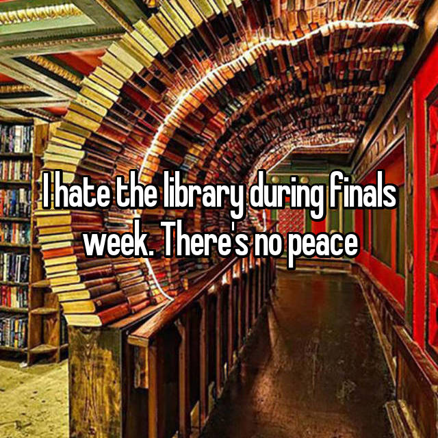 I hate the library during finals week. There's no peace