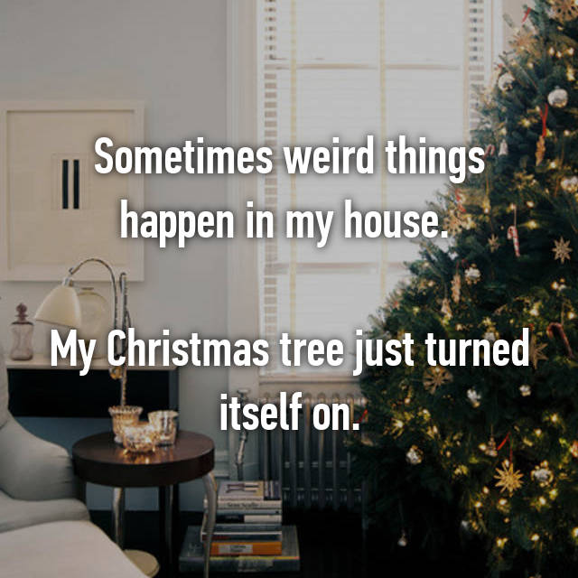 Sometimes weird things happen in my house.   My Christmas tree just turned itself on.