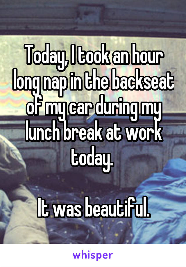 Today, I took an hour long nap in the backseat of my car during my lunch break at work today.   It was beautiful.