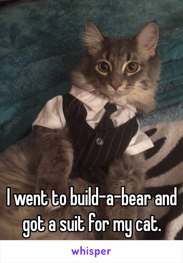I went to build-a-bear and got a suit for my cat.