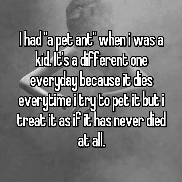 "I had ""a pet ant"" when i was a kid. It's a different one everyday because it dies everytime i try to pet it but i treat it as if it has never died at all."