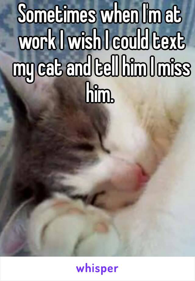 Sometimes when I'm at work I wish I could text my cat and tell him I miss him.