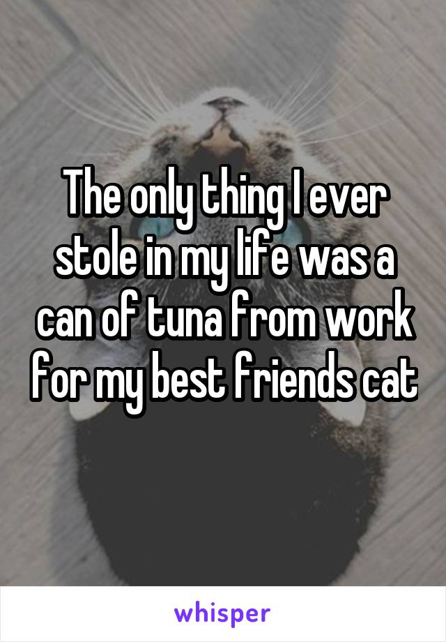 The only thing I ever stole in my life was a can of tuna from work for my best friends cat