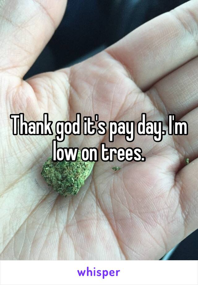 Thank god it's pay day. I'm low on trees.