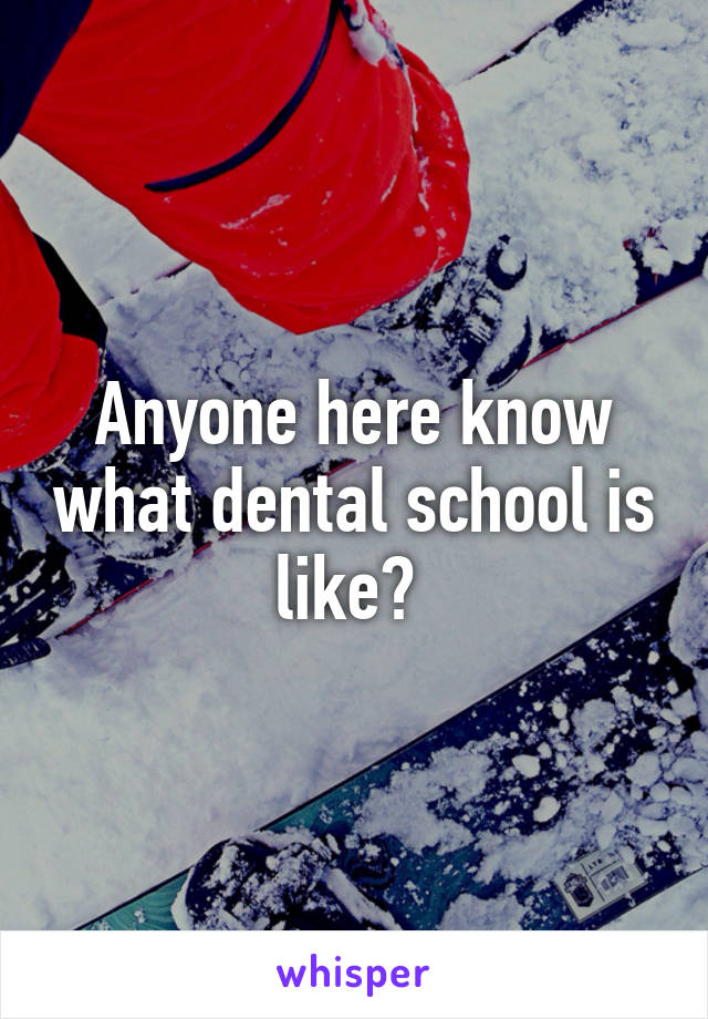 Anyone here know what dental school is like?