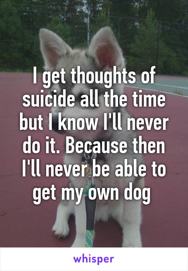 I get thoughts of suicide all the time but I know I'll never do it. Because then I'll never be able to get my own dog