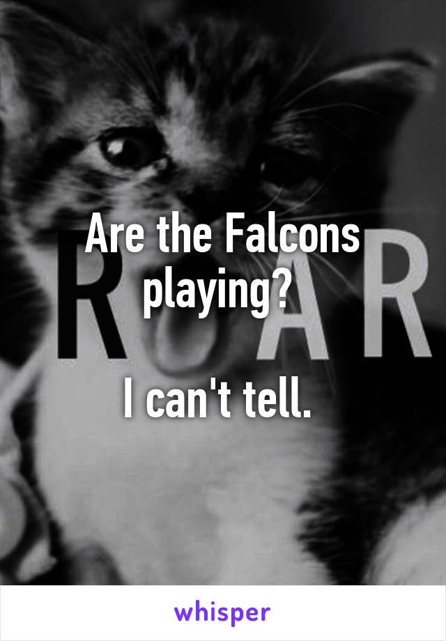 Are the Falcons playing?   I can't tell.