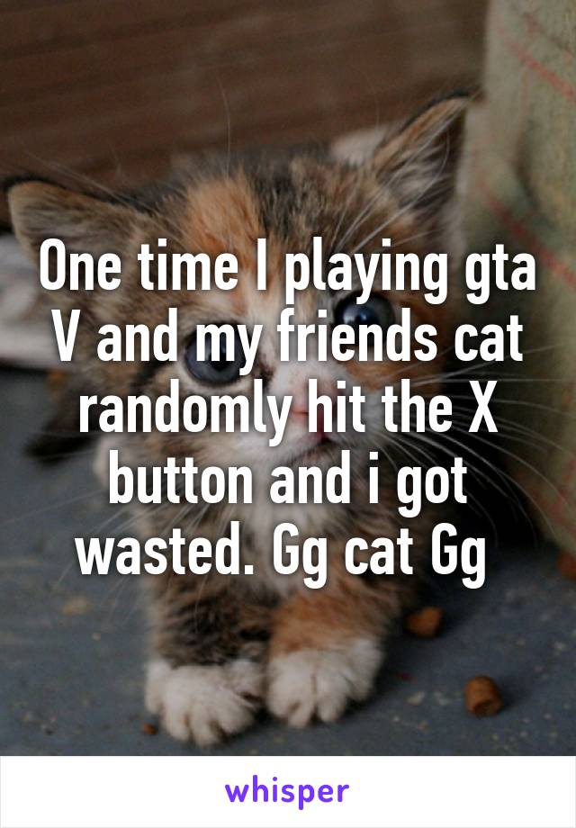 One time I playing gta V and my friends cat randomly hit the X button and i got wasted. Gg cat Gg