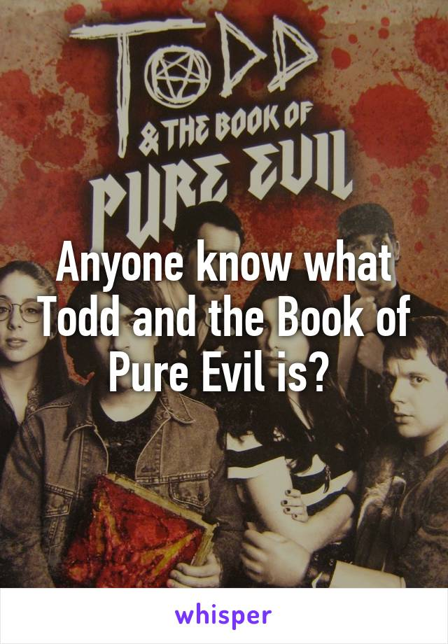 Anyone know what Todd and the Book of Pure Evil is?