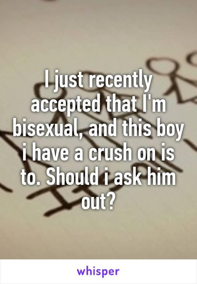 I just recently accepted that I'm bisexual, and this boy i have a crush on is to. Should i ask him out?