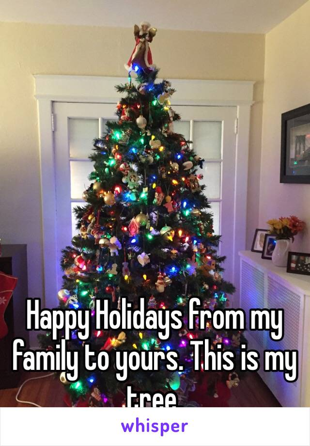 Happy Holidays from my family to yours. This is my tree.