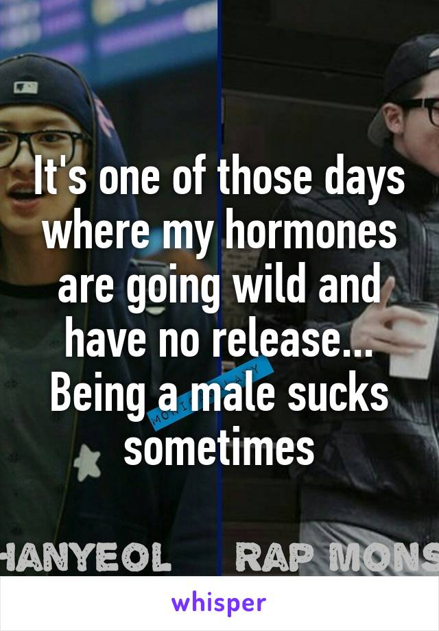 It's one of those days where my hormones are going wild and have no release... Being a male sucks sometimes