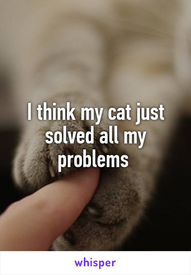 I think my cat just solved all my problems