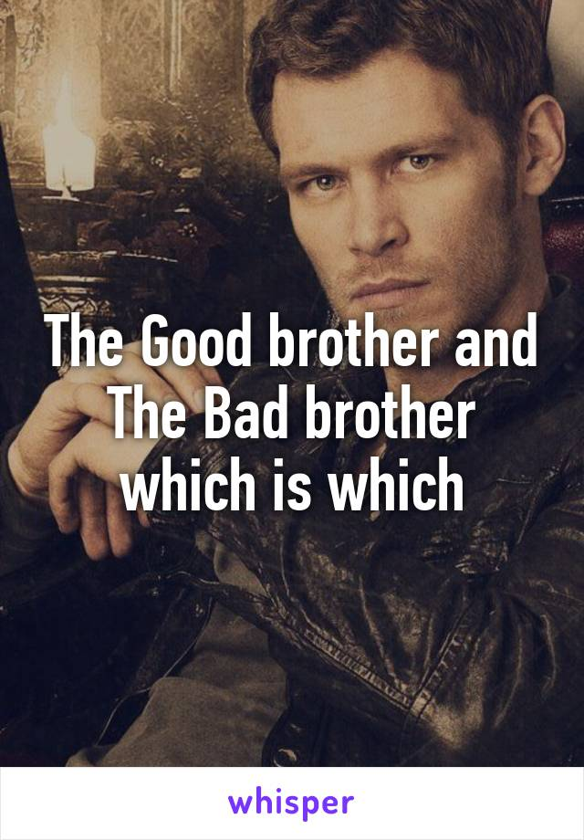The Good brother and The Bad brother which is which